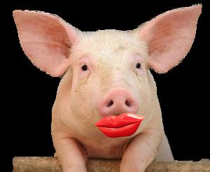 Lipstickonpig